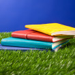 Notebook in the grass — Stock Photo