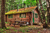 Rustic Old Log Cabin — Stock Photo