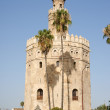 Torre del Oro or Gold Tower in Seville — Stock Photo #6876655