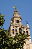 La Giralda Tower in Seville, Spain — Stock Photo