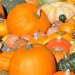 Pumpkin background — Stock Photo #7651745