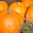 Stock Photo: Orange pumpkins
