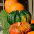 Pumpkins on sale — Stock Photo