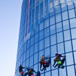 Workers washing windows - Photo