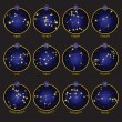 Vector de stock : Zodiac symbols with XII Constellations