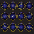 Zodiac symbols with XII Constellations — Vettoriali Stock