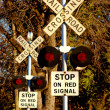 Multi Railroad Crossing — Stock Photo