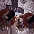 Old Railroad Crossing — Stock Photo