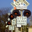 Multi Railroad Crossing — Stock Photo #7130109