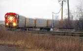 Freight Train Detroit — Stock Photo