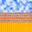 Pencil Rows — Stock Photo