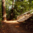 Heavenly Stairway in Park — Stock Photo #7455857