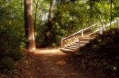 Himmelska trappa i park — Stockfoto