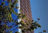 Downtown Detroit Building Close-up — Stock Photo
