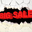 Big Sale Concept — Stock Photo #7241441