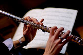 Flautist — Stock Photo