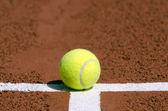 Tennisboll — Stockfoto