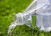 Water in the grass — Stock Photo