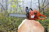 Chain saw — Stock Photo