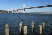 San francisco defne köprü — Stok fotoğraf