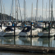 Yachts and boats in marina of Sausalito, USA — Stock Photo