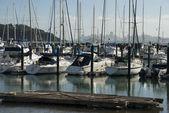 Yachts et bateaux dans le port de plaisance de sausalito, é.-u — Photo