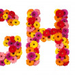 Letter G H I - flower alphabet isolated on white - Stock Photo