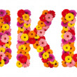 Letter J K L - flower alphabet isolated on white — Stock Photo