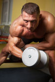 Biceps shot of a strong man — Stock Photo