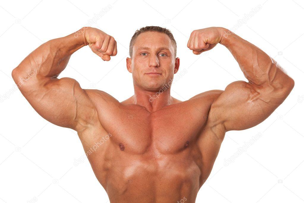 male hormones definition