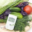 Check of vegetables on radiation presence — Stock Photo