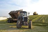 Tractor and the bulldozer on silo preparation. — Stock Photo