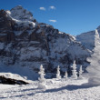 Stock fotografie: Alps with snow pyramids in winter day.