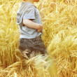Stock Photo: Small baby boy walking through a grass field