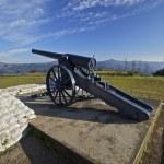 Boer War, Long Tom Gun — Stock Photo #7343462