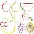 Stock Vector: Fruits in Line Art