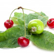 Cherry and apples — Stock Photo