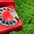Stock Photo: Red phone on green grass
