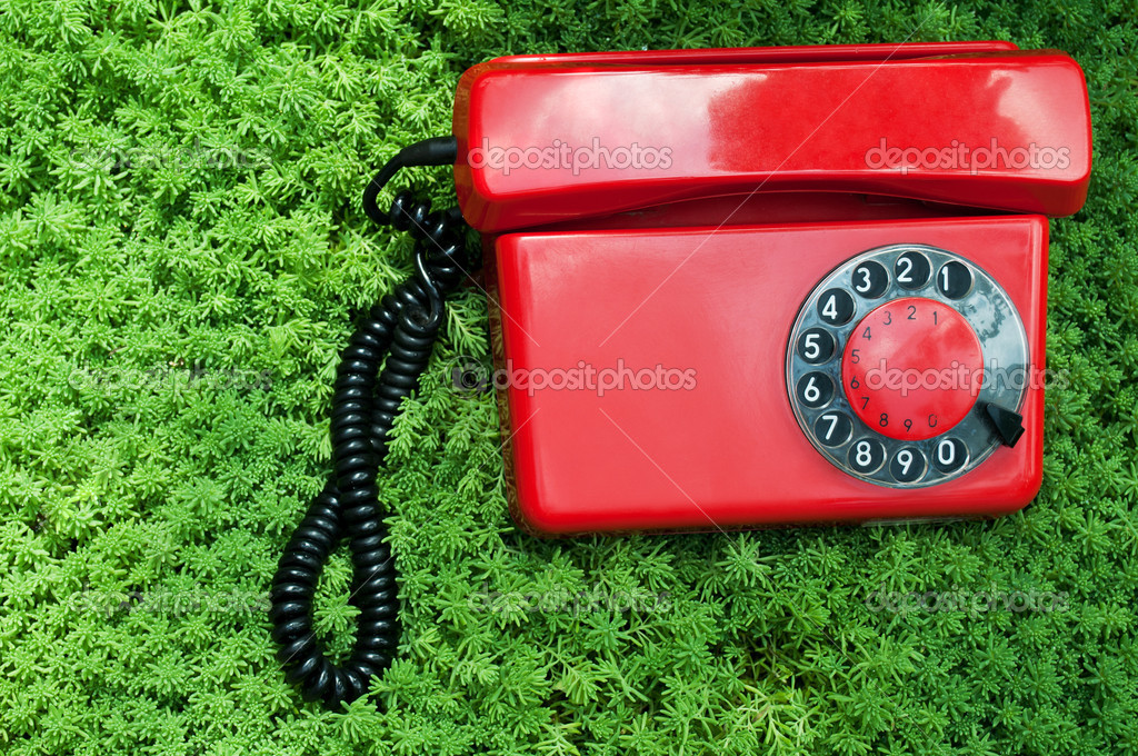 Retro telephone on a green grass background — Stock Photo #6821419