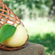Organic apples in the basket — Stock Photo