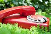 Classic old phone — Stock Photo