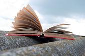 Ouvrez le livre rouge — Photo