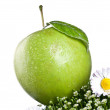 Stock Photo: Fresh apple isolated on a white background