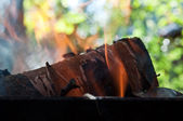 Wood burn in the fire — Stock Photo