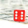 Closeup of red dice and dollars — Stock Photo