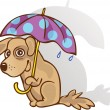 Funny dog under an umbrella. The method of protection. Guessed. — Stock Vector
