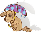 Funny dog under an umbrella. The method of protection. Guessed. — Wektor stockowy