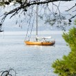 Panoramic of the sea Adriatic Sea on Cavtat's coast, Croatia. — Stock Photo