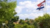 Vlaggen aan de wind. — Stockfoto