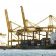 Stock Photo: Cranes in port